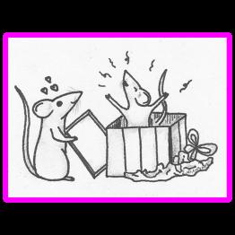 Donatie Rattenopvang Leusden